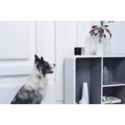 Petcube, Inc. Coupons 2016 and Promo Codes