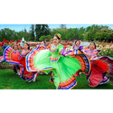 Grupo Folklorico Los Laureles Coupons 2016 and Promo Codes