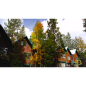 North Lake Lodges Villas Coupons 2016 and Promo Codes