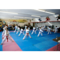 Y G Lee Tae Kwon Do Academy Coupons 2016 and Promo Codes