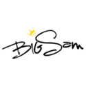 Big Sam Coupons 2016 and Promo Codes